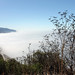 above the fog at the hermitage by emdot
