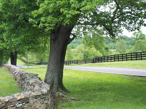 Loudoun County, Virginia (by: Heather Elias, creative commons)