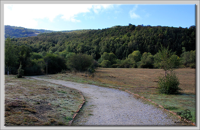 Roblón de Estalaya (Palencia) (2)