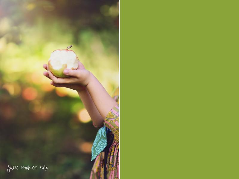 orchard-697dvmsfwmfb