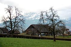 Swiss Cottage - Lucerne, Switzerland