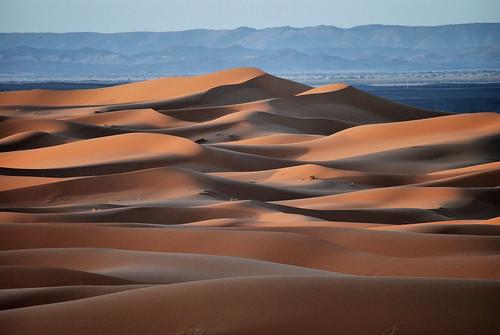 sahara landscape desert dune morocco maroc marocco paesaggio deserto sabbia