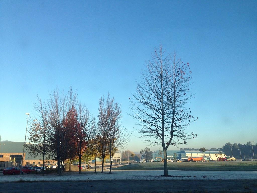 Fría mañana de otoño [63/365]
