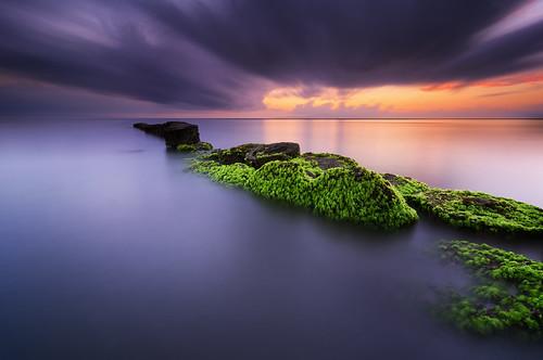 longexposure bali seascape seaweed sunrise indonesia landscape moss nikon day ss hard tokina filter le 09 lee nd 116 graduated sanur gnd wavebreakers 1116mm matahariterbit d7000 pwpartlycloudy