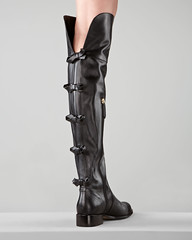 footwear, leather, limb, leg, riding boot, boot,