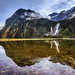 Reflections in Milford Sound by Stuck in Customs