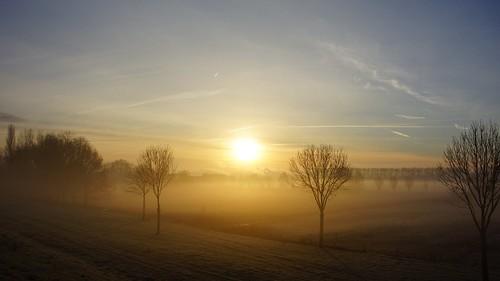 winter cloud sun mist holland nature water dutch fog sunrise landscape day cloudy sony nederland natuur zon januari landschap morningsun zuilichem bommelerwaard gelderland brakel zonsopkomst nieuwaal