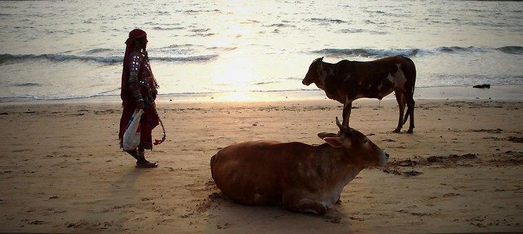 3. Estampa clásica en Goa. Autor, Travelmeasia