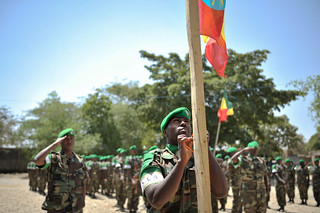 2014_01_22_Ethiopia_Welcome_Ceremony_007.jpg | by AMISOM Public Information