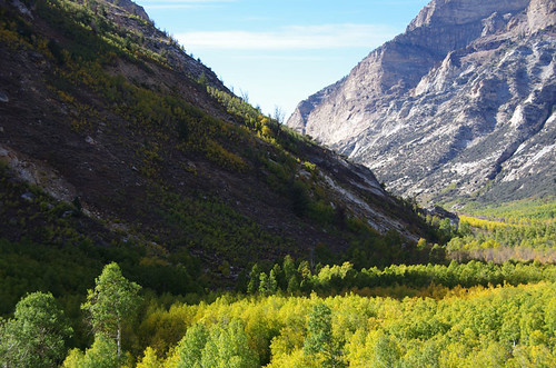 fallcolor nevada canyon lamoillecanyon