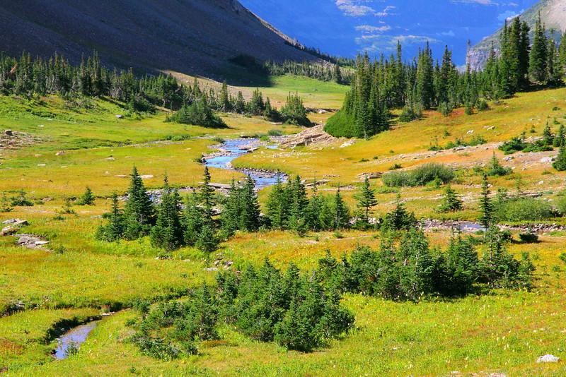 IMG_3915 Preston Park, Siyeh Pass Trail, Glacier National Park