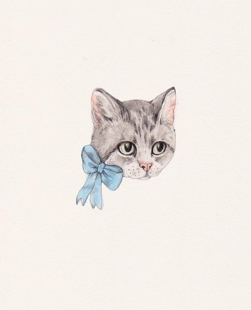 Blue Bow Tabby