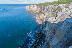 Cliffs, Royal National Park