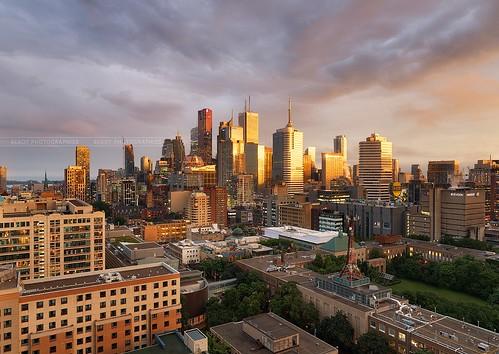 Golden light on Toronto