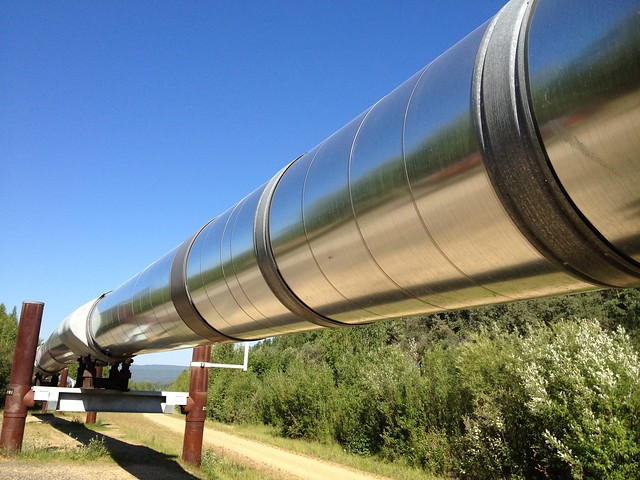 Trans-Alaska oil pipeline, near Fairbanks