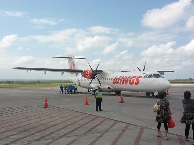 Самолеты компании Wings