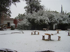 Finca La Vasconia de Goyenechea recibe visitantes durante el invierno
