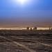Sunrise_dance_dust-6893 by philippeschaedler