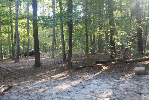 Camping at Prince William Forest Park - View Whlie Nursing Saturday