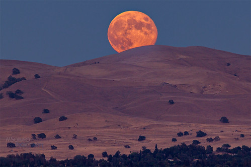 california road moon yellow golden harvest pass fullmoon hills moonrise bailey bayarea moonlight eastbay bluehour concord martinez pleasanthill 400mm contracosta kirker 2013 56l claycord msoriano msorianophotography