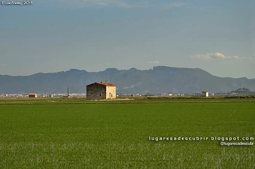 La Albufera (Valencia, España)