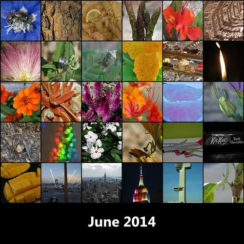 2014:365 June Mosaic