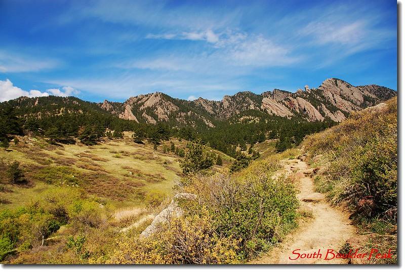 Towhee trail 1