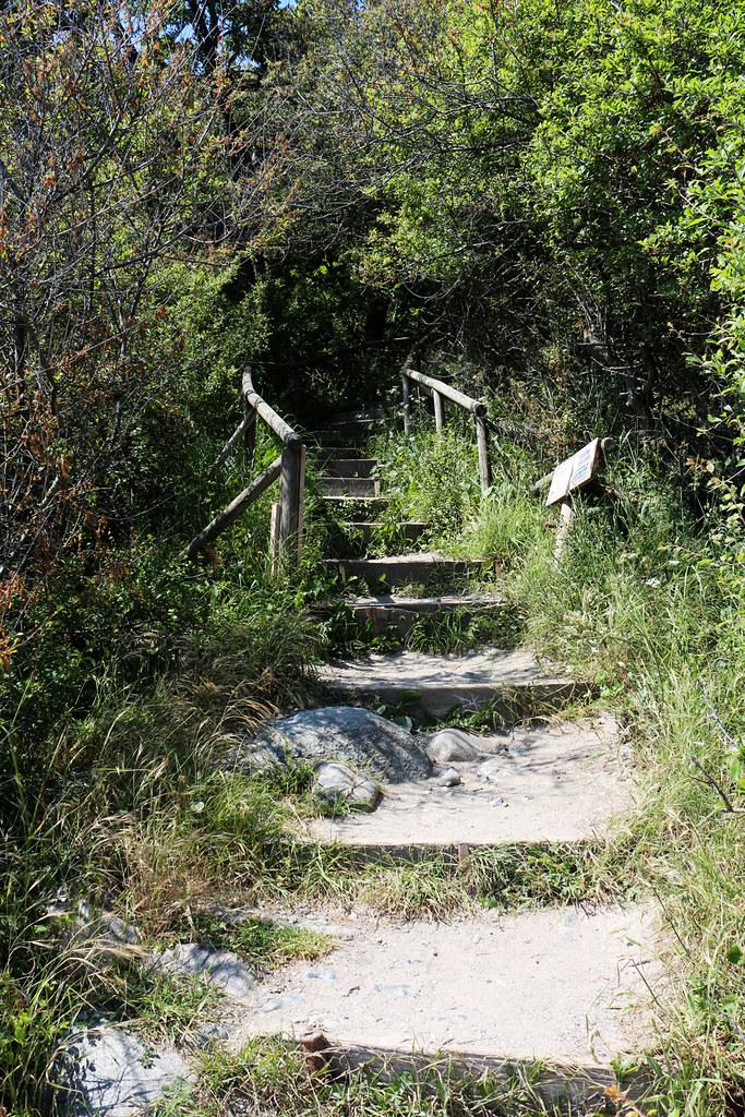 Märchenhaft - die Veilchentreppe
