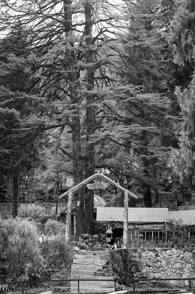 Company Garden, Musoorie