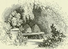 "Image from page 224 of ""Midsummer Eve : a fairy tale of loving and being loved"" (1870)"