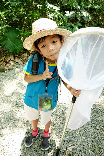 閱野親子昆蟲營