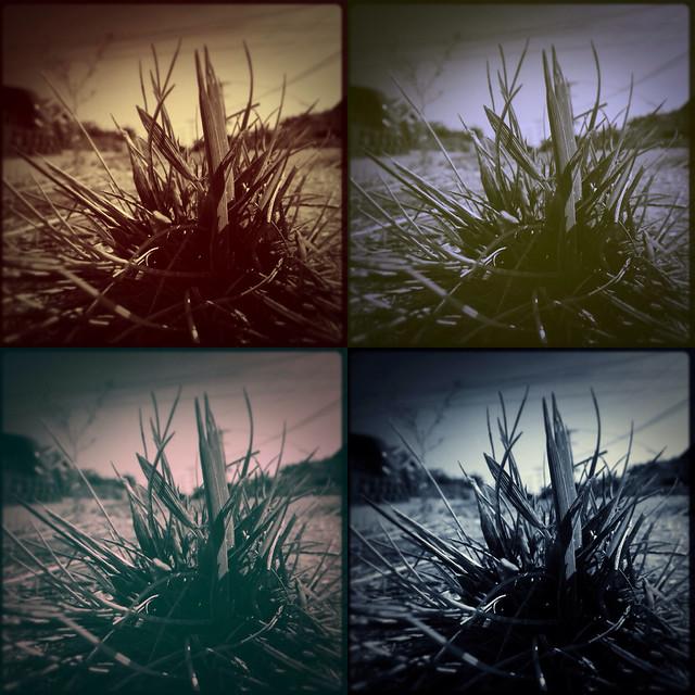 myFilm SLR-like