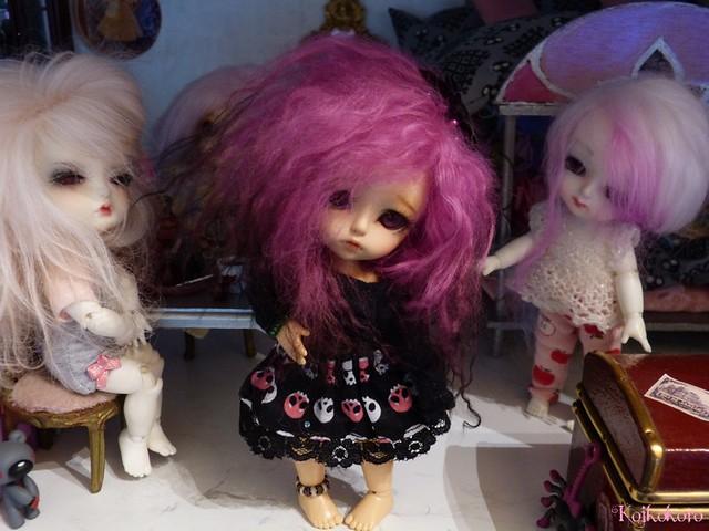 Les tinies de Koikokoro~photos en vrac - Page 5 14865345399_a0744124c6_z