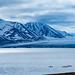 Kayaking @ Van Keulenfjorden, Arctic