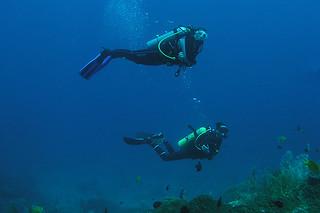 "<img src=""deep-diver-tioman-island-malaysia.jpg"" alt=""Deep Diver, Tioman Island, Malaysia."" />"