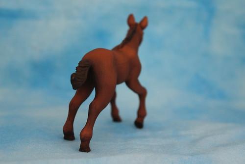Walkaround of the 2011 Mojo Fun Hanoverian Foal 14877896720_44b1aa7f15