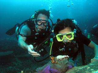"<img src=""padi-diving-labas-tioman-island-malaysia.jpg"" alt=""PADI diving, Labas, Tioman Island, Malaysia"" />"