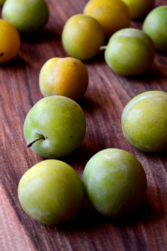Greengage Plum Recipe