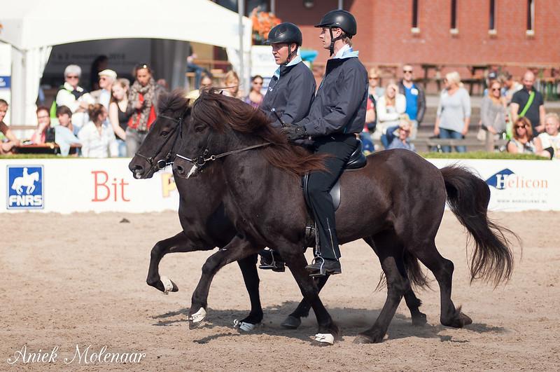 Foto's vrijdag Horse Event • Bokt.nl | 800 x 531 jpeg 282kB