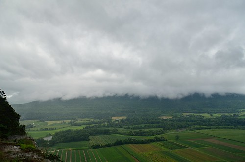 summer ny newyork green nature rain weather clouds insect outdoors nose view farm moth farmland valley schoharie 2014 vronmans