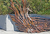 Metal Sculpture Eastbank Esplanade Portland Oregon