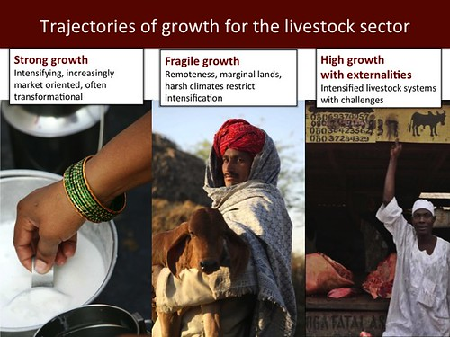 Mixed Crop-Livestock Systems: Slide 21