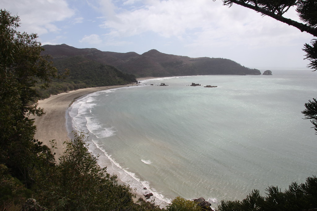 cape hillsborough, queensland