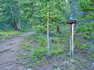 Wheeler Trail Signage
