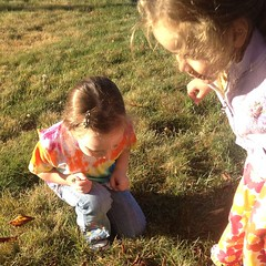 Teagan found a #grasshopper. Ashlin was not impressed. #morning #insect