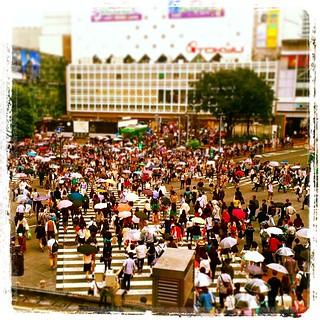 #japon #sibuya