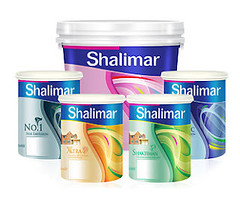 India's Shalimar Paints has a new CEO with a new strategy