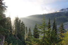 Mount_Rainier_National_Park-8.jpg