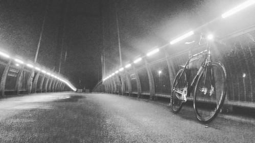 Post 20days antibiotics ride.   #singlespeed #allcitycycles #cycling #beernem #igbeernem