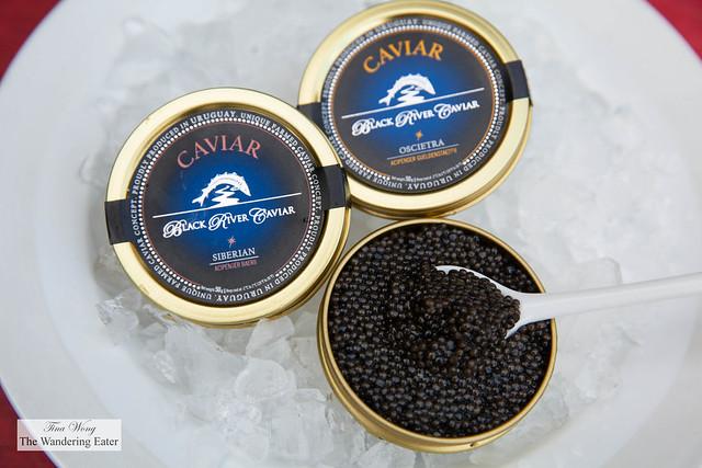 Black River Caviar - Light Brown Oscietra (Acipenser Gueldenstaedtii)  & Black Oscietra (Acipenser Gueldenstaedtii)